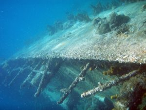 Duiken en snorkelen op Aruba